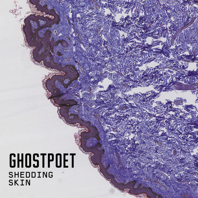 Ghostpoet Shedding Skin Dot Dash Albums of 2015
